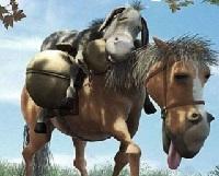 Truyện ngụ ngôn ngắn La Phông Ten - Lừa và Ngựa